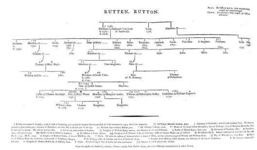 rutten family tree